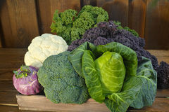 Fresh organic market vegetables on wooden background Royalty Free Stock Images