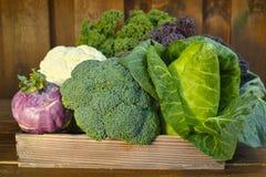 Fresh organic market vegetables on wooden background Royalty Free Stock Photos