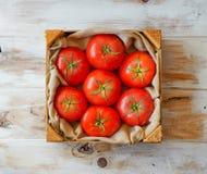 Fresh organic mature tomatoes. Stock Photos