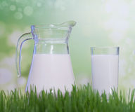 Fresh organic milk. Stock Photo