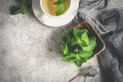 Fresh organic mint and tea on a gray background.  stock image