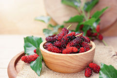 fresh organic mulberry in bowl on wooden background with mulberry fruit and mulberry branch. Royalty Free Stock Photos