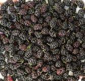 Fresh organic mulberry, closeup background Stock Photography