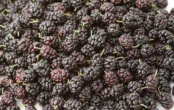 Fresh organic mulberry, closeup background Stock Photo
