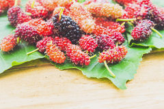 Fresh organic mulberry. On wooden background Royalty Free Stock Image