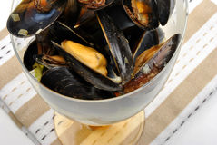 Fresh organic mussel in garlic butter. Some fresh organic mussel in garlic butter stock photography