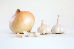 Fresh organic onion and garlics Royalty Free Stock Image
