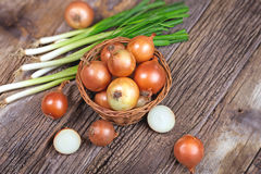 Fresh organic onion and spring onion on rustic table in wicker basket Stock Photography