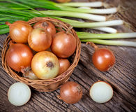 Fresh organic onion and spring onion on table Royalty Free Stock Photography