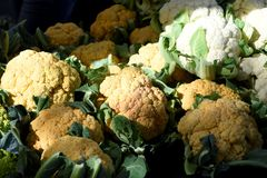 Fresh organic orange cauliflower. Offered from the farmer`s market fresh organic orange and white cauliflowers in a pile for sale Royalty Free Stock Images
