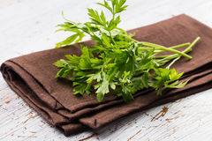 Fresh organic parsley Royalty Free Stock Photo
