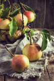 Fresh organic pears Stock Images
