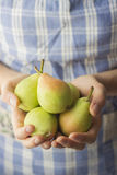 Fresh Organic Pears Stock Photo