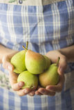 Fresh Organic Pears Royalty Free Stock Images
