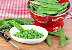 Fresh Organic Peas Being Shelled Stock Photos