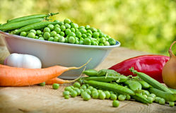 Fresh organic peas in bowl Stock Images