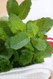 fresh organic peppermint from the garden Stock Photos