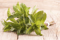 Fresh organic peppermint on wood Stock Image