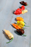 Fresh organic peppers Royalty Free Stock Photography