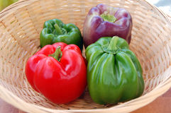 Fresh Organic Peppers Royalty Free Stock Images