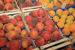 Plums on Farmers Market in Catania royalty free stock photography