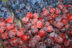 Plums on Farmers Market in Catania stock photos