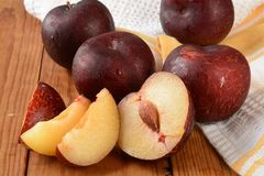 Fresh organic plums Stock Images