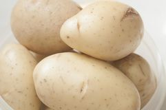 Raw Potato close up on container stock photos