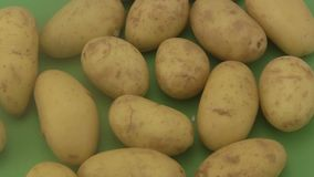 Fresh organic potatoes a green  background. Stock Images