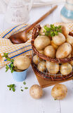 Fresh organic potatoes in a vintage rustic basket. Fresh organic potatoes with thyme in a vintage rustic basket on white wooden background stock image
