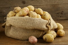 Fresh organic potatoes on a wooden background. Rustic style Stock Images
