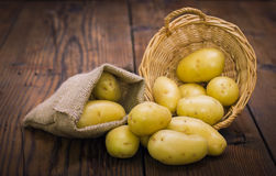 Fresh organic potatoes Stock Photography