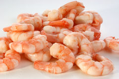 fresh organic prawns ready to eat Stock Image