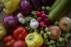 Fresh organic produce from the garden Royalty Free Stock Photo
