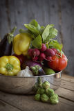 Fresh organic produce from the garden Royalty Free Stock Photography