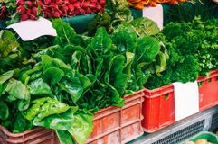 Fresh organic produce at the local farmers market. Farmers ` markets are a traditional way of selling agricultural products. Stock Images