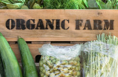 Fresh organic produce in wooden box Royalty Free Stock Images