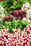 Fresh organic radish and beet-root on farmers market. In Paris, France Royalty Free Stock Photo