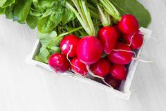 Fresh organic radish bunch in wooden crate. Healthy bio vegetables Royalty Free Stock Photography