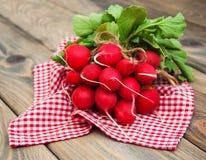 Fresh organic radish Royalty Free Stock Image
