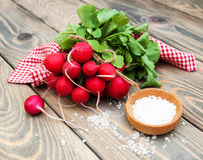 Fresh organic radish. On a old wooden background Stock Image