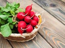 Fresh organic radish Royalty Free Stock Images