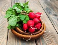 Fresh organic radish Royalty Free Stock Photos