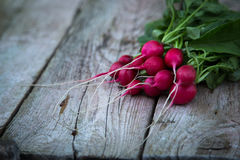 Fresh organic radish on a old wooden background. Radishes with tops Royalty Free Stock Images