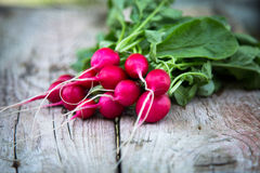 Fresh organic radish on a old wooden background. Radishes with tops Royalty Free Stock Photography
