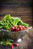 Fresh organic radish on wooden  background. Fresh organic radish in colander on old wooden  background, selective focus Stock Photos