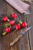 Fresh organic radish on wooden background. Fresh organic radish with knife on rustic wooden background. Selective focus stock images