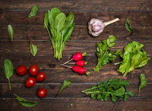 Fresh organic radishes cherry tomatoes and greens herbs just fro. M the garden on rustic wooden background Stock Photography