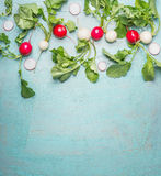 Fresh organic radishes from garden on blue wooden background, top view. Border Stock Photography