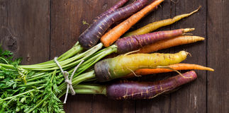 Fresh organic rainbow carrots with green Royalty Free Stock Images